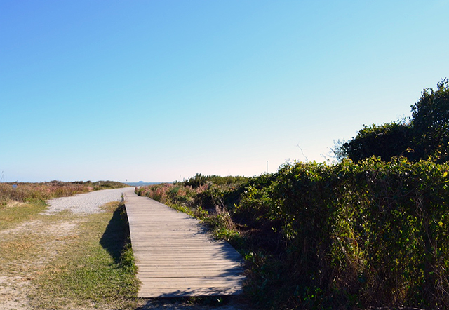 Things To Do In Sullivan S Island Sc